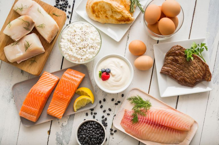 Protein: A Foundation For a Healthy Life