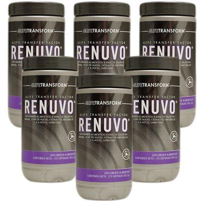 Renuvo 6 Pack