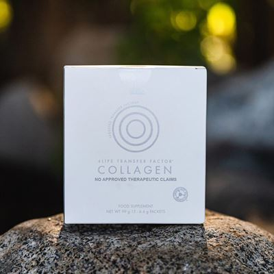 Collagen two
