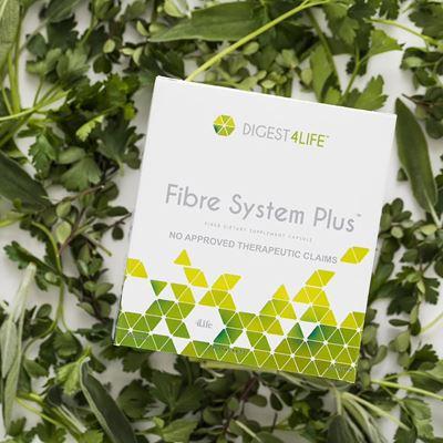 Fibre system plus one